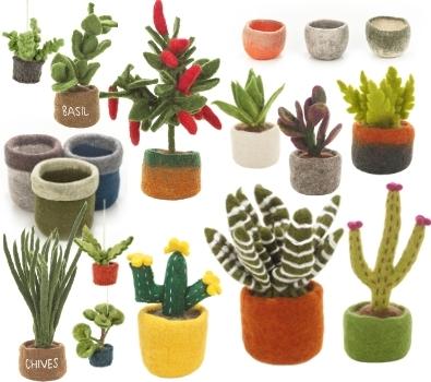 Plants, Pots & Cacti